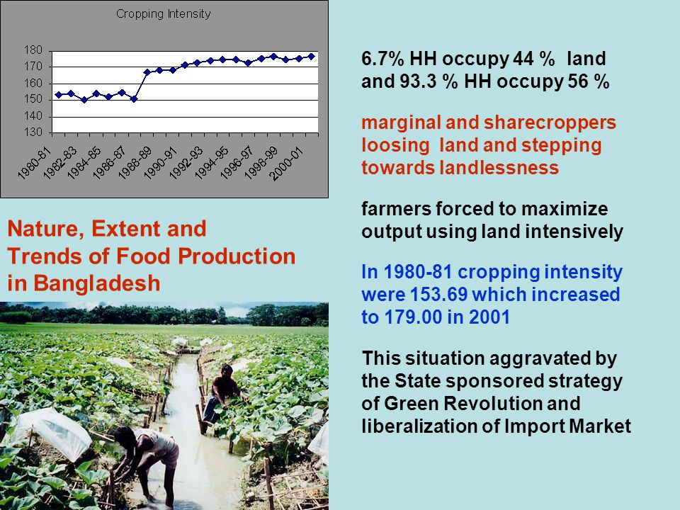 Nature, Extent and Trends of Food Production in Bangladesh 6.7% HH occupy 44 % land and 93.3 % HH occupy 56 % marginal and sharecroppers loosing land