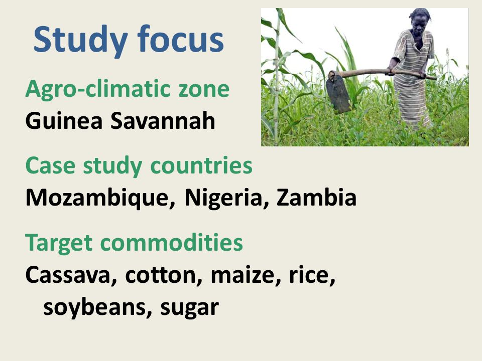 African Guinea Savannah 800 - 1,100 mm rainfall 150 - 220 days season 7 million km 2 total area 0.5 million km 2 cropped 3 cropping systems: Cereal - root crop Root crop Maize mixed