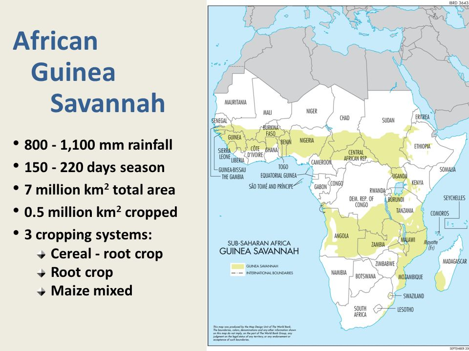African Guinea Savannah 800 - 1,100 mm rainfall 150 - 220 days season 7 million km 2 total area 0.5 million km 2 cropped 3 cropping systems: Cereal -