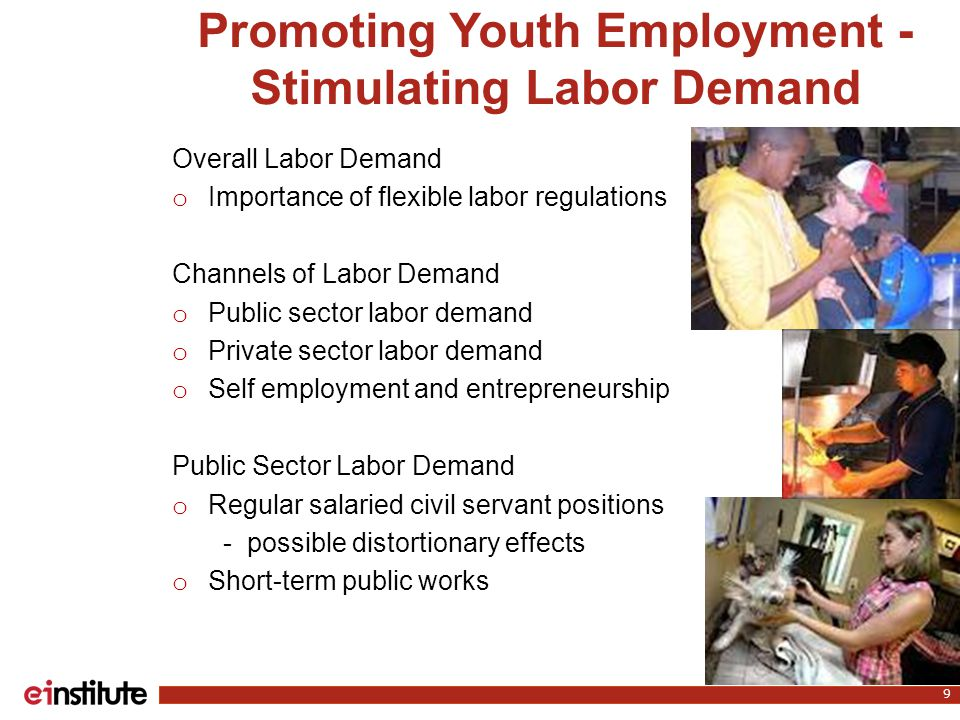 9 Overall Labor Demand o Importance of flexible labor regulations Channels of Labor Demand o Public sector labor demand o Private sector labor demand o Self employment and entrepreneurship Public Sector Labor Demand o Regular salaried civil servant positions - possible distortionary effects o Short-term public works