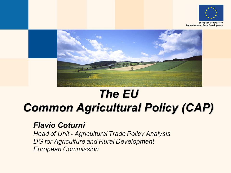 The EU Common Agricultural Policy (CAP) Flavio Coturni Head of Unit - Agricultural Trade Policy Analysis DG for Agriculture and Rural Development Euro