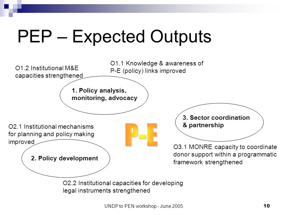 UNDP to PEN workshop - June 200510 PEP – Expected Outputs 1.