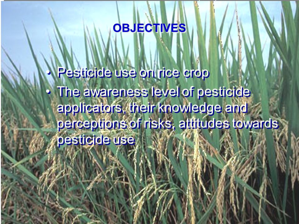 POVERTY AND PESTICIDE USE IN VIETNAM - THE CASE OF FARMERS IN RICE PRODUCTION IN THE MEKONG DELTA VIETNAM METHODOLOGY Sample selection criteria Sample selection criteria a.