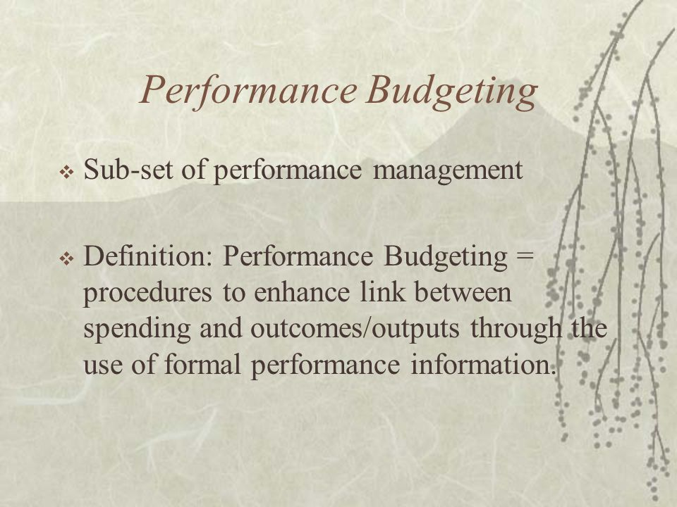 Performance Budgeting  Sub-set of performance management  Definition: Performance Budgeting = procedures to enhance link between spending and outcom