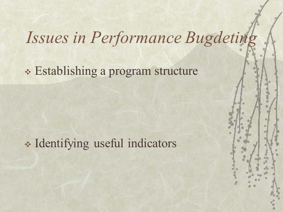 Issues in Performance Bugdeting  Establishing a program structure  Identifying useful indicators