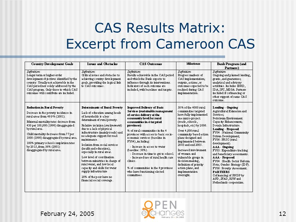 February 24, 200512 CAS Results Matrix: Excerpt from Cameroon CAS