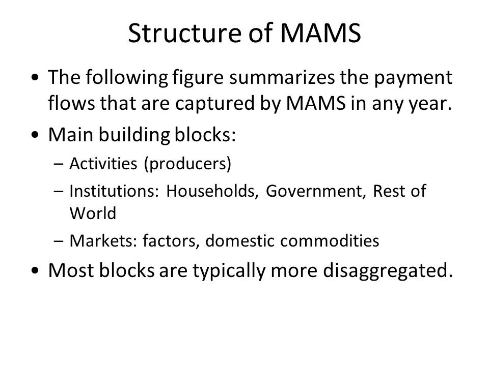 Structure of MAMS The following figure summarizes the payment flows that are captured by MAMS in any year.