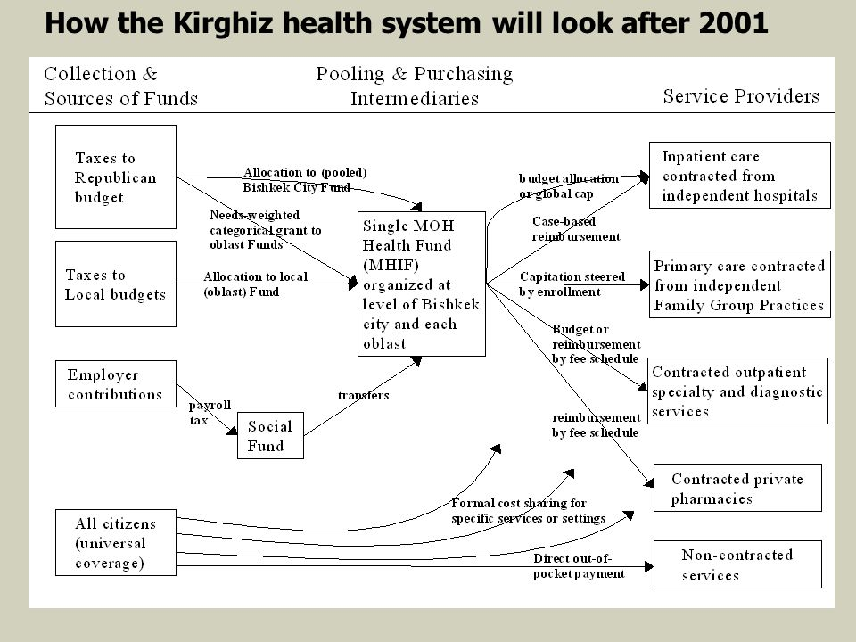 How the Kirghiz health system will look after 2001