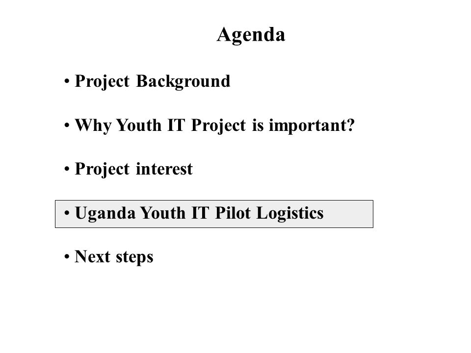 Project Background Why Youth IT Project is important.