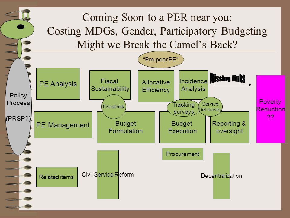 Coming Soon to a PER near you: Costing MDGs, Gender, Participatory Budgeting Might we Break the Camel's Back? PE Analysis PE Management Fiscal Sustain