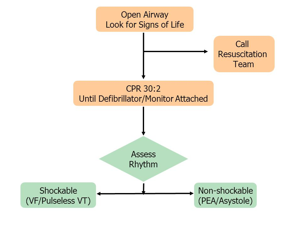Open Airway Look for Signs of Life CPR 30:2 Until Defibrillator/Monitor Attached Assess Rhythm Shockable (VF/Pulseless VT) Non-shockable (PEA/Asystole