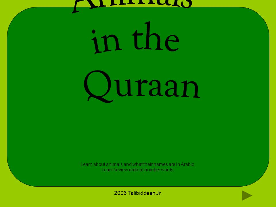 2006 Talibiddeen Jr. Learn about animals and what their names are in Arabic. Learn/review ordinal number words.