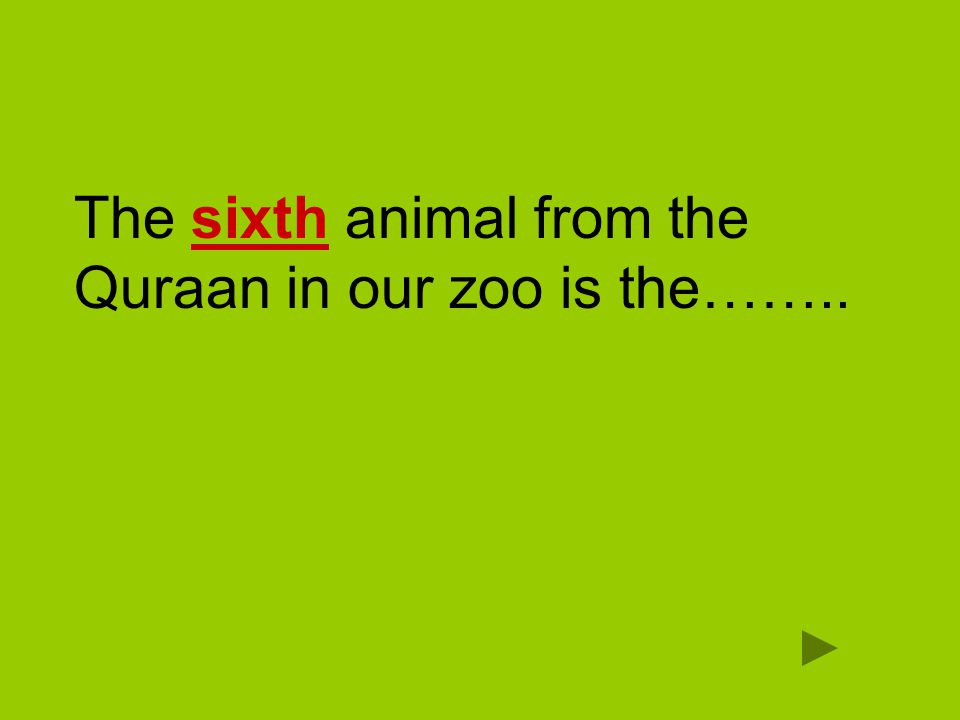 The sixth animal from the Quraan in our zoo is the……..