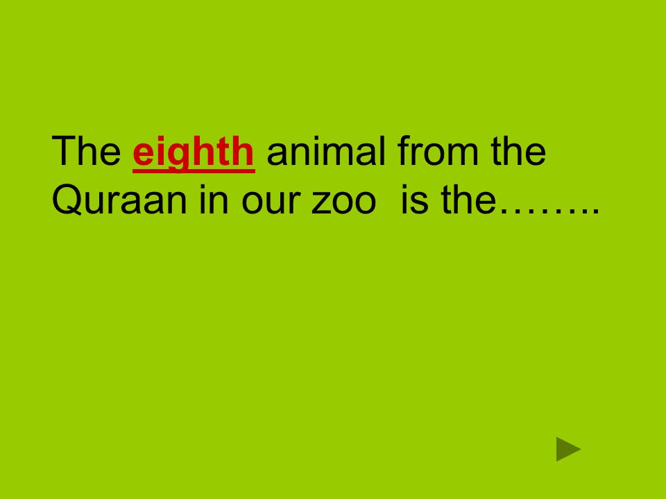 The eighth animal from the Quraan in our zoo is the……..