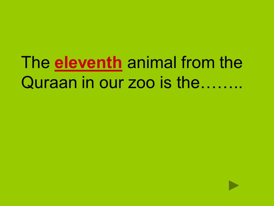 The eleventh animal from the Quraan in our zoo is the……..