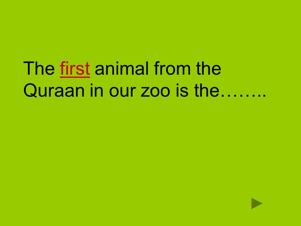 The first animal from the Quraan in our zoo is the……..
