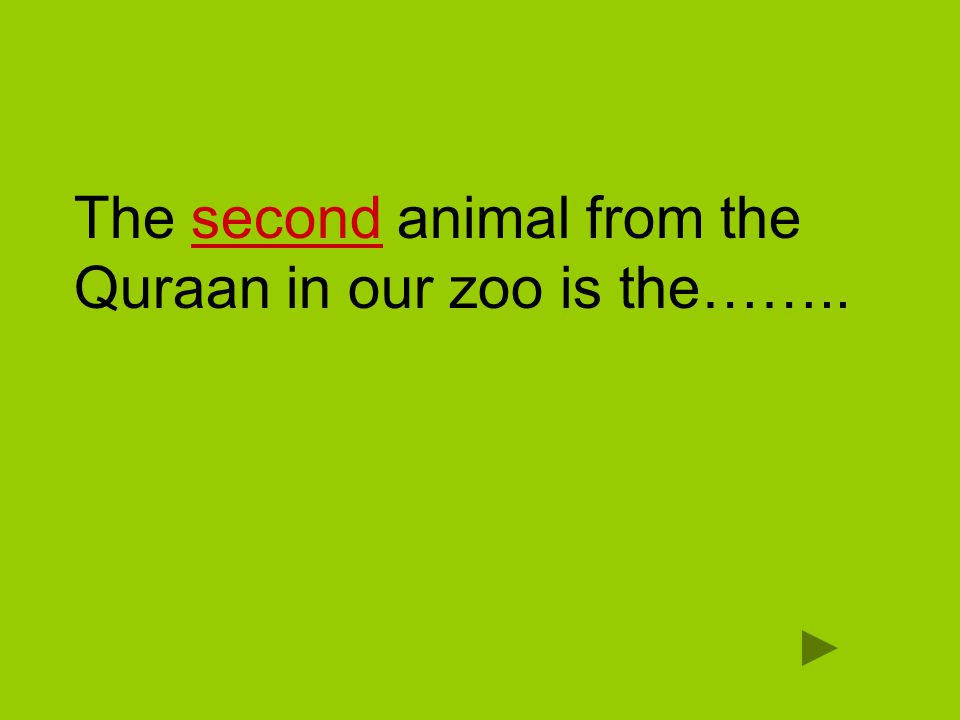 The second animal from the Quraan in our zoo is the……..