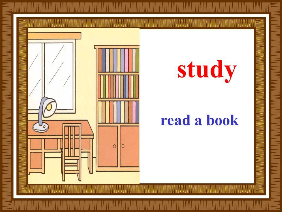 study read a book
