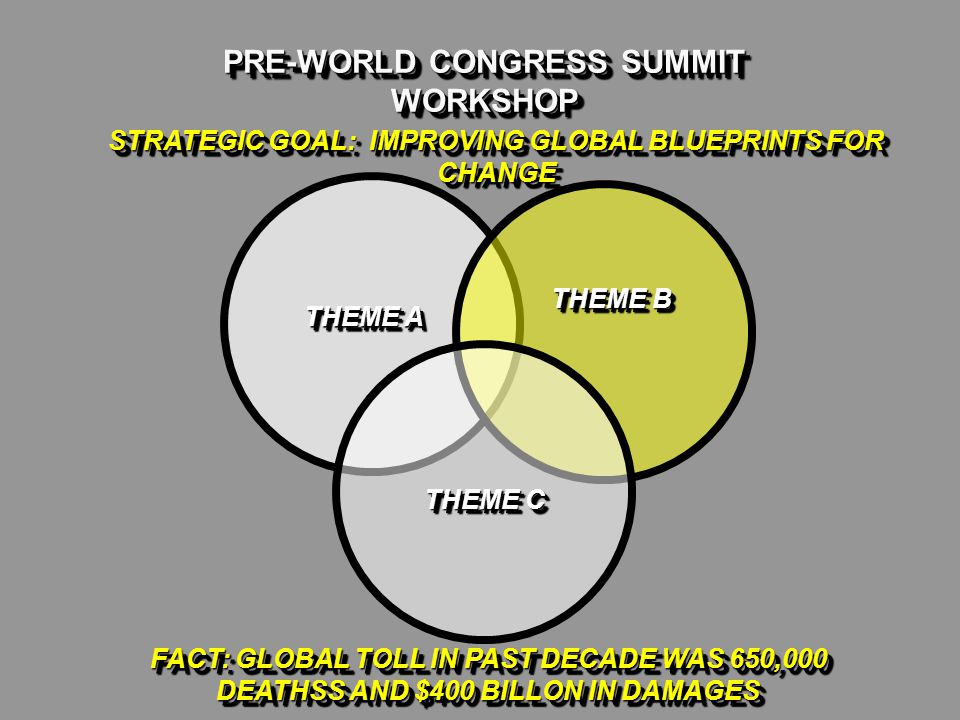 PRE-WORLD CONGRESS SUMMIT WORKSHOP THEME A THEME B THEME C FACT: GLOBAL TOLL IN PAST DECADE WAS 650,000 DEATHSS AND $400 BILLON IN DAMAGES STRATEGIC GOAL: IMPROVING GLOBAL BLUEPRINTS FOR CHANGE