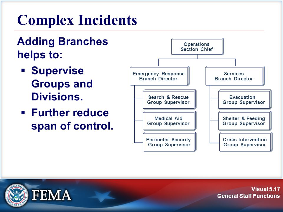 Visual 5.17 General Staff Functions Adding Branches helps to:  Supervise Groups and Divisions.