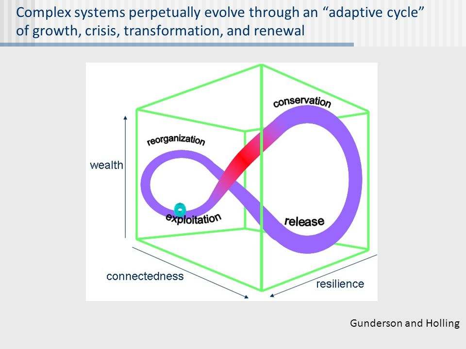 """Complex systems perpetually evolve through an """"adaptive cycle"""" of growth, crisis, transformation, and renewal Gunderson and Holling"""