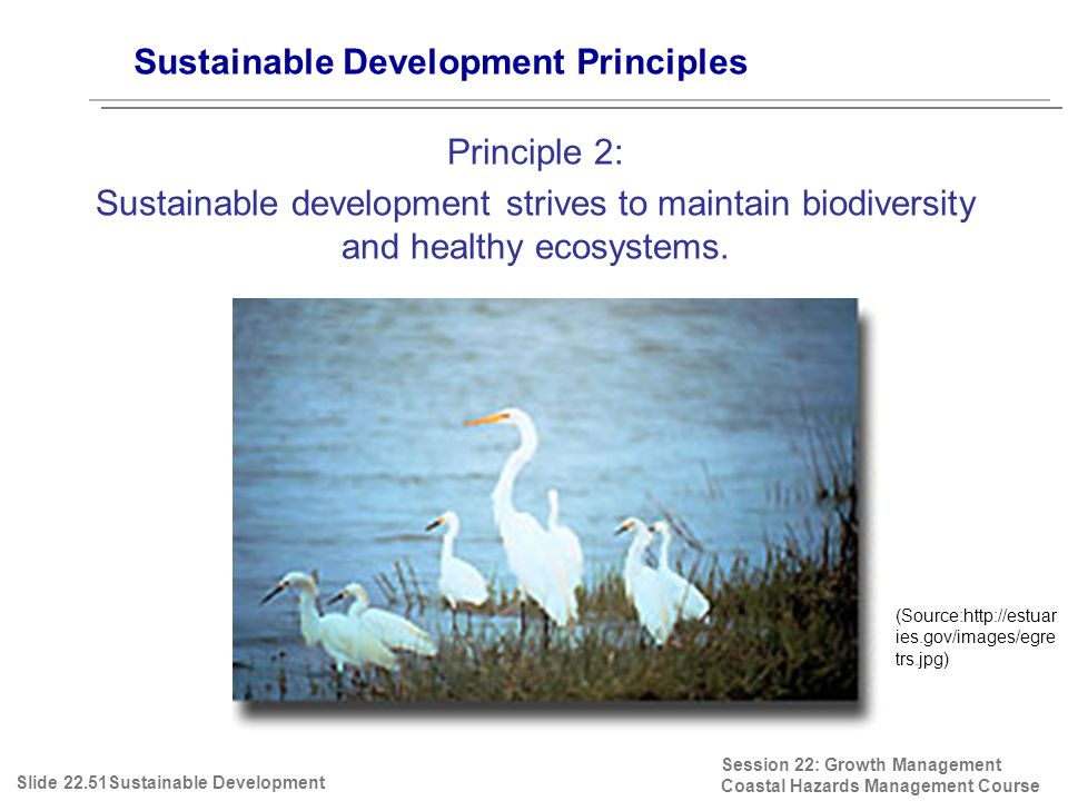 Session 22: Growth Management Coastal Hazards Management Course (Source:http://estuar ies.gov/images/egre trs.jpg) Sustainable Development Principles Principle 2: Sustainable development strives to maintain biodiversity and healthy ecosystems.