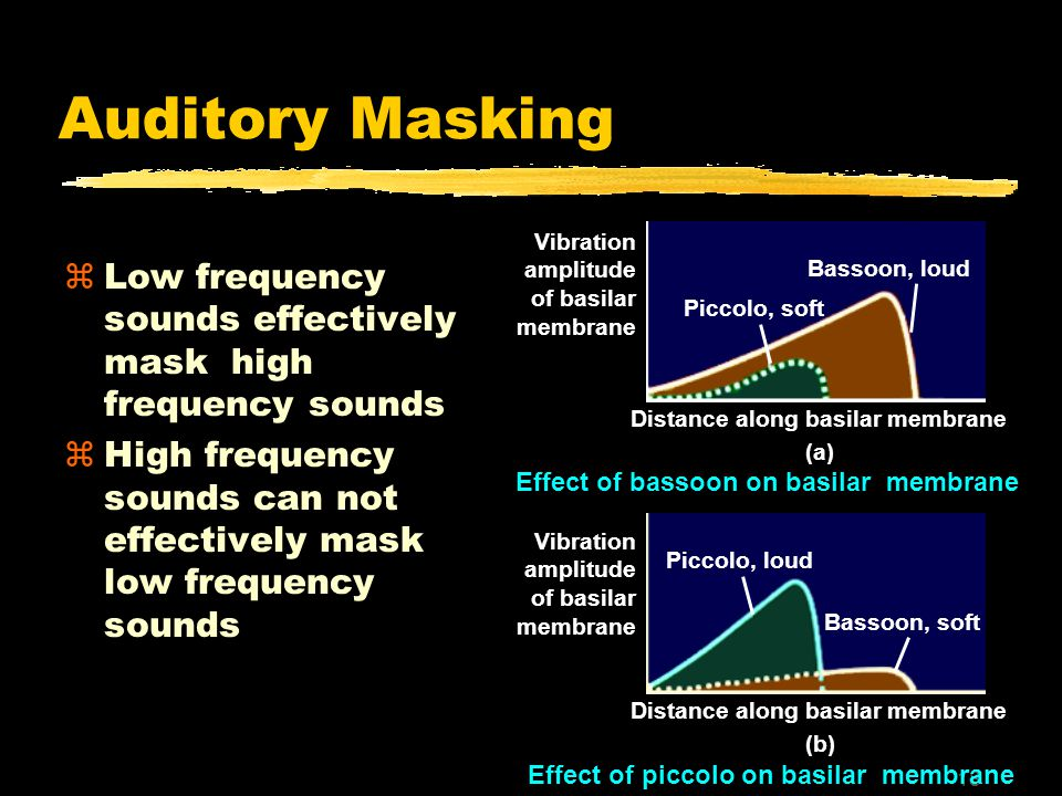 18 Auditory Masking zLow frequency sounds effectively mask high frequency sounds zHigh frequency sounds can not effectively mask low frequency sounds Piccolo, soft Bassoon, loud Piccolo, loud Bassoon, soft Distance along basilar membrane (a) Distance along basilar membrane (b) Effect of bassoon on basilar membrane Vibration amplitude of basilar membrane Vibration amplitude of basilar membrane Effect of piccolo on basilar membrane