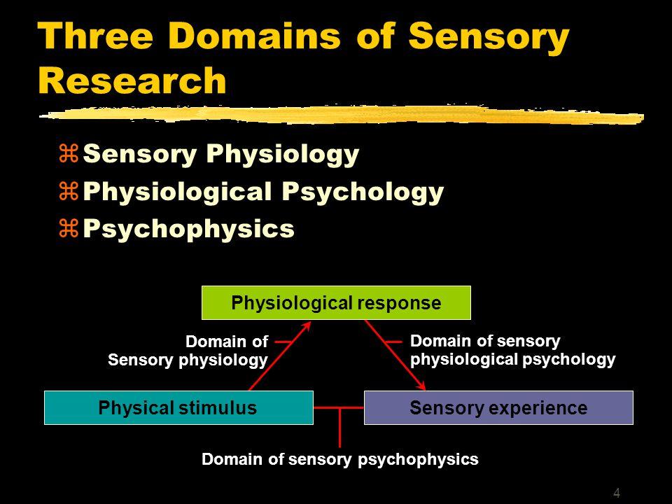 4 Three Domains of Sensory Research zSensory Physiology zPhysiological Psychology zPsychophysics Sensory experiencePhysical stimulus Domain of Sensory physiology Domain of sensory psychophysics Domain of sensory physiological psychology Physiological response