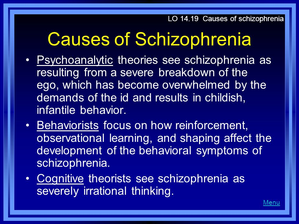 Causes of Schizophrenia Biological explanations focus on dopamine, structural defects in the brain, and genetic influences in schizophrenia.