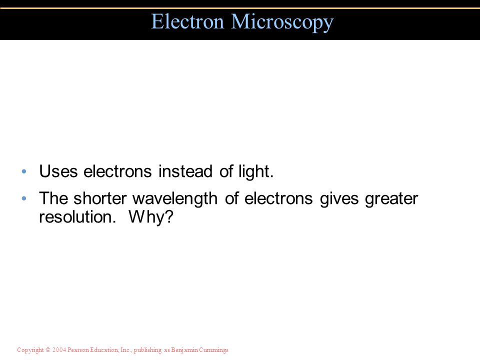 Copyright © 2004 Pearson Education, Inc., publishing as Benjamin Cummings Uses electrons instead of light. The shorter wavelength of electrons gives g