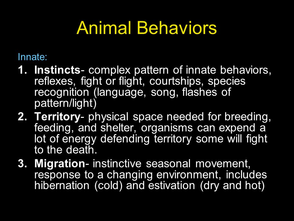 Animal Behaviors Innate: 1.Instincts- complex pattern of innate behaviors, reflexes, fight or flight, courtships, species recognition (language, song,