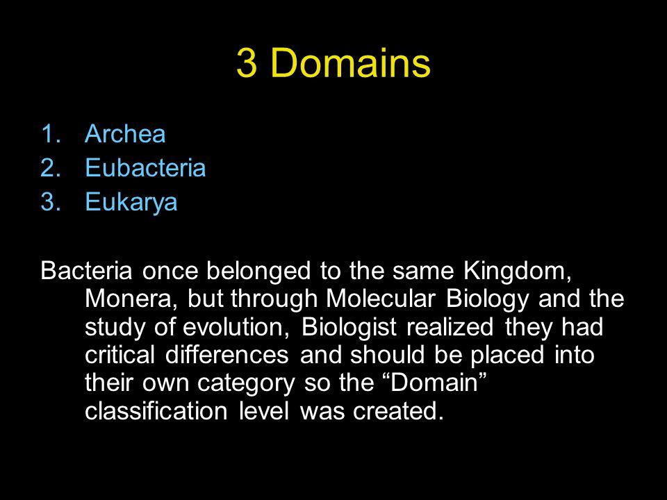Protozoa or Animal like Protist Protozoa or Animal-like, classified by mode of movement Sarcodina ex.