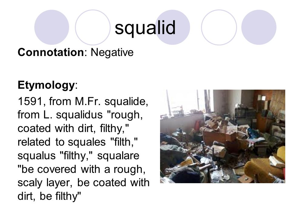 squalid Connotation: Negative Etymology: 1591, from M.Fr. squalide, from L. squalidus