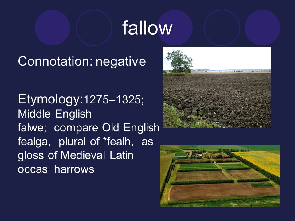 fallow Connotation: negative Etymology: 1275–1325; Middle English falwe; compare Old English fealga, plural of *fealh, as gloss of Medieval Latin occa