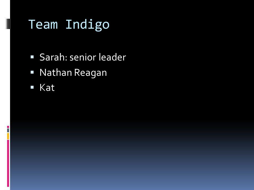 Team Indigo  Sarah: senior leader  Nathan Reagan  Kat