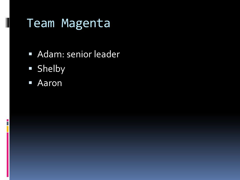 Team Magenta  Adam: senior leader  Shelby  Aaron
