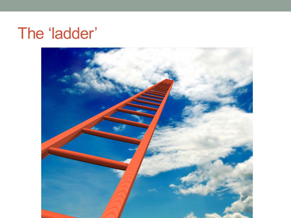The 'ladder'