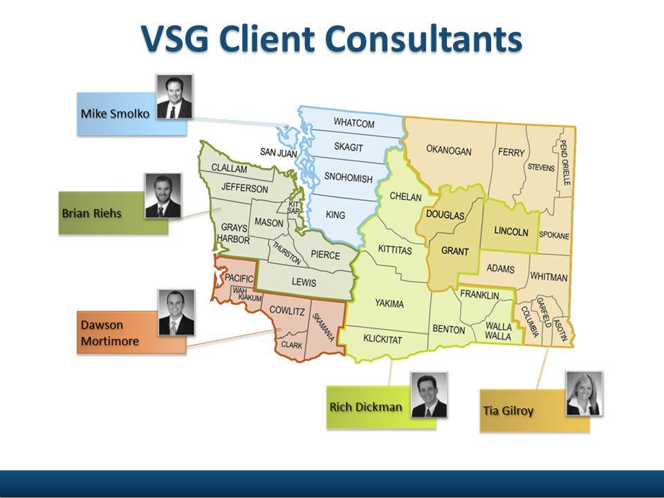 VSG Client Consultants