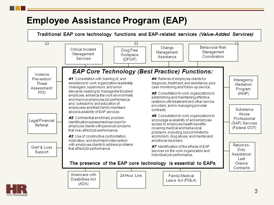 3 Employee Assistance Program (EAP) Traditional EAP core technology functions and EAP-related services (Value-Added Services) Critical Incident Manage