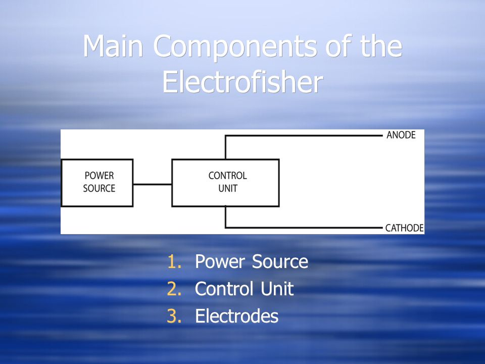 Main Components of the Electrofisher 1.Power Source 2.Control Unit 3.Electrodes