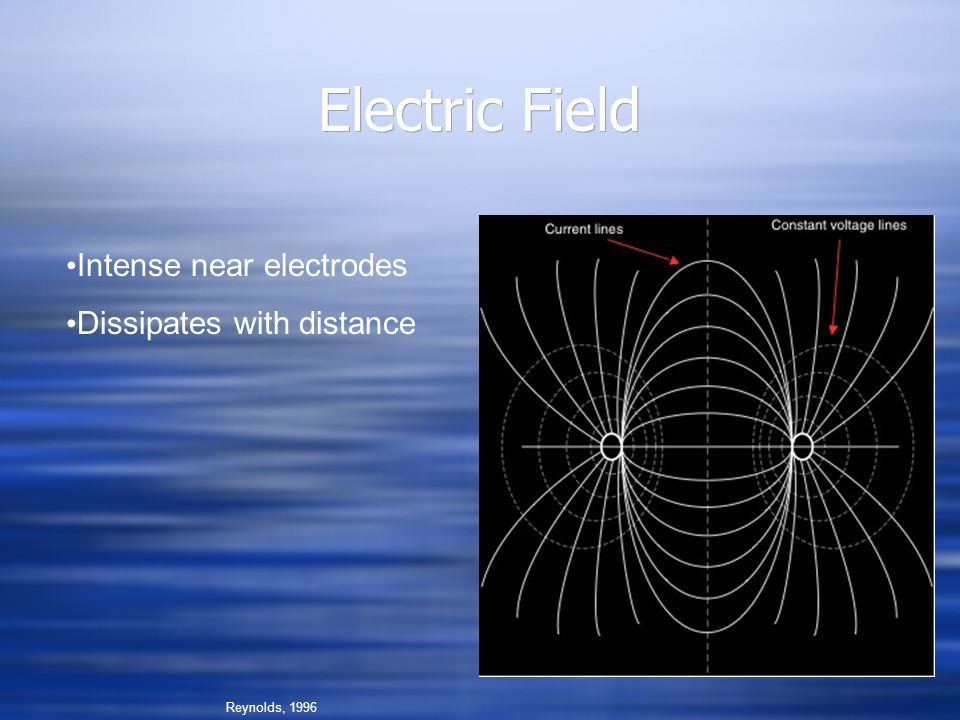 Electric Field Reynolds, 1996 Intense near electrodes Dissipates with distance