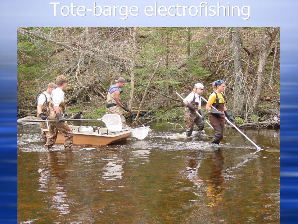 Tote-barge electrofishing