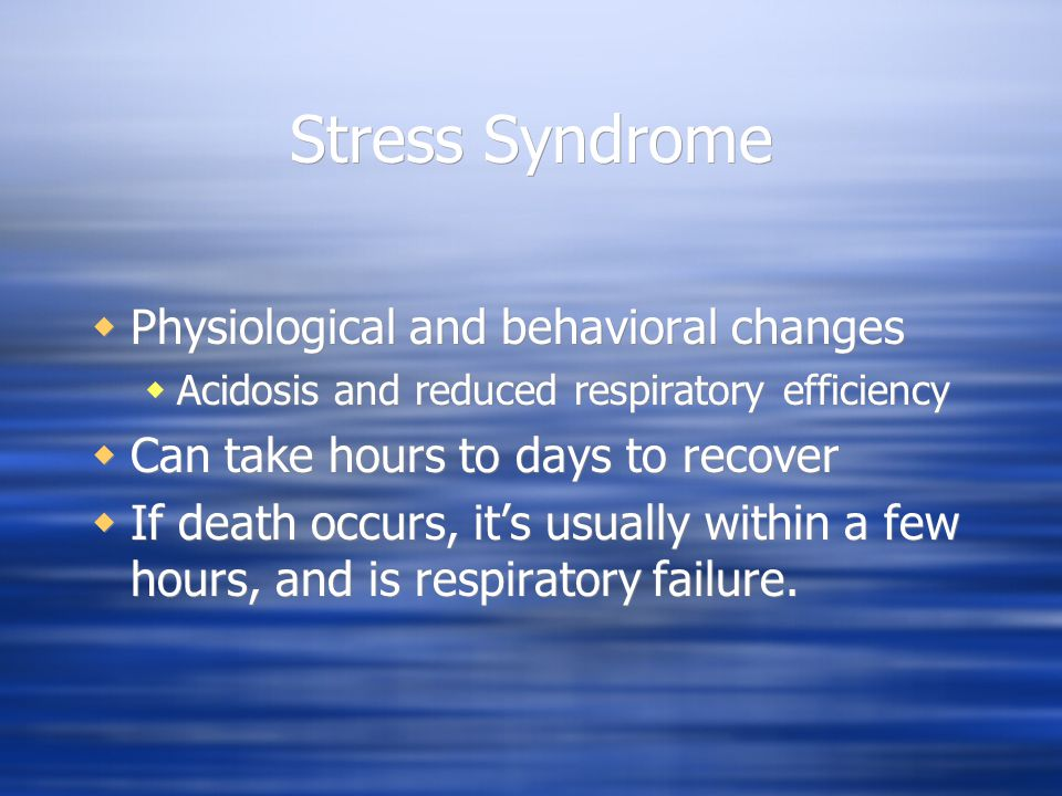 Stress Syndrome  Physiological and behavioral changes  Acidosis and reduced respiratory efficiency  Can take hours to days to recover  If death oc