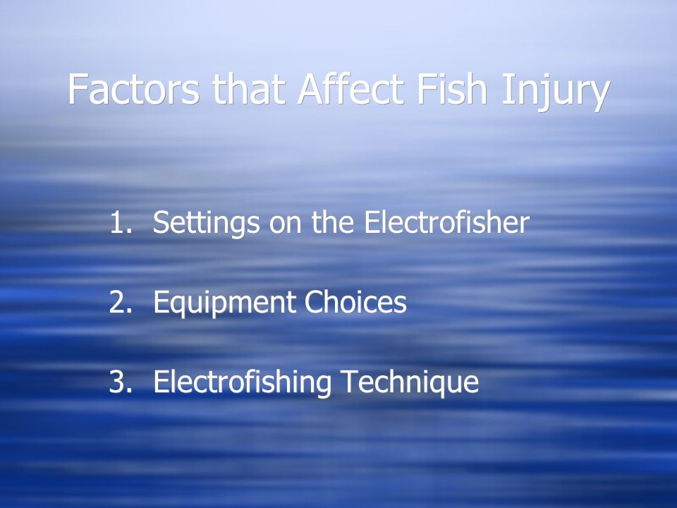 Factors that Affect Fish Injury 1. Settings on the Electrofisher 2. Equipment Choices 3. Electrofishing Technique 1. Settings on the Electrofisher 2.
