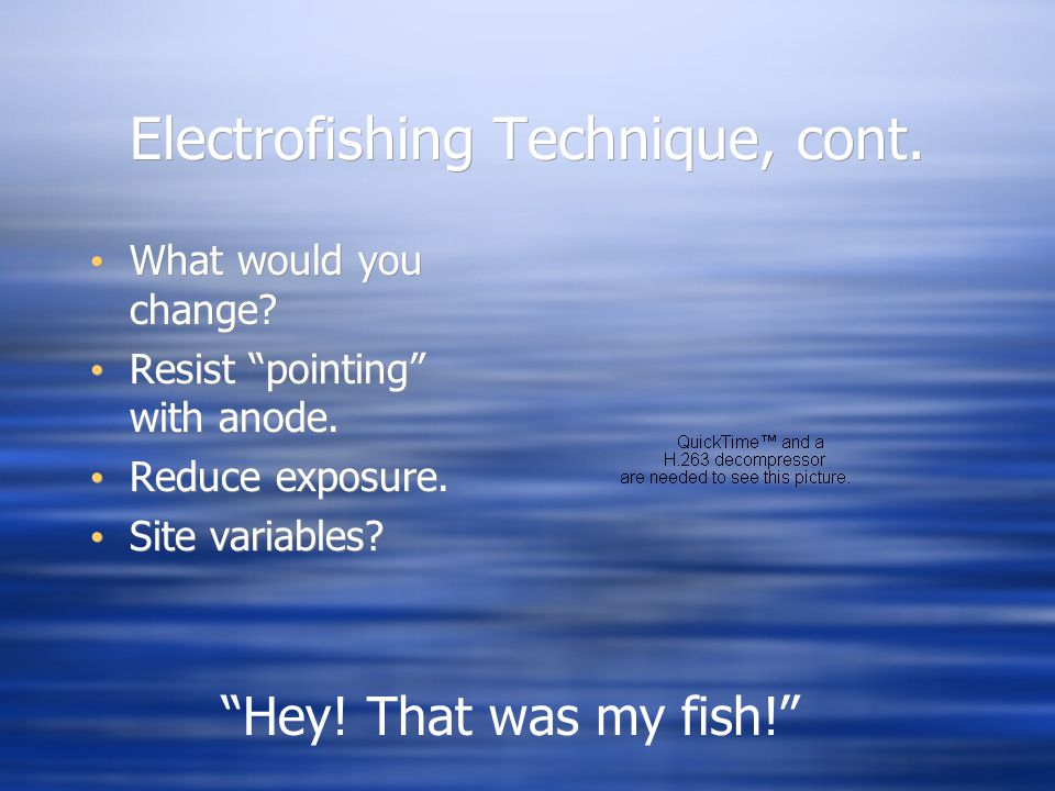 """Electrofishing Technique, cont. What would you change? Resist """"pointing"""" with anode. Reduce exposure. Site variables? What would you change? Resist """"p"""