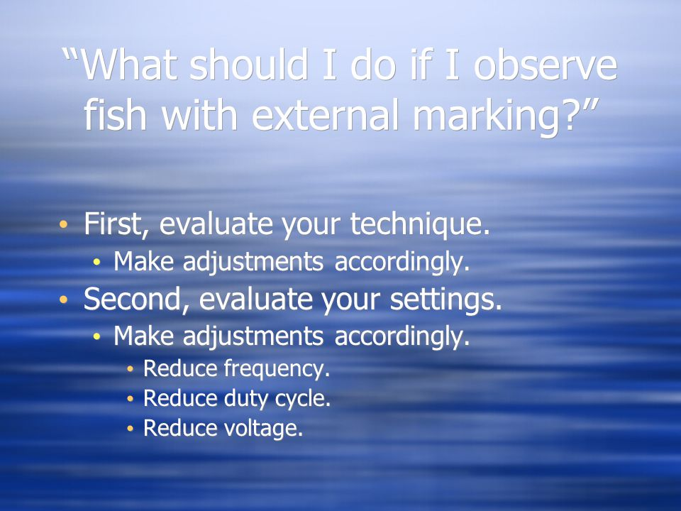 """""""What should I do if I observe fish with external marking?"""" First, evaluate your technique. Make adjustments accordingly. Second, evaluate your settin"""