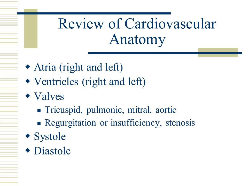 Review of Cardiovascular Anatomy  Atria (right and left)  Ventricles (right and left)  Valves Tricuspid, pulmonic, mitral, aortic Regurgitation or