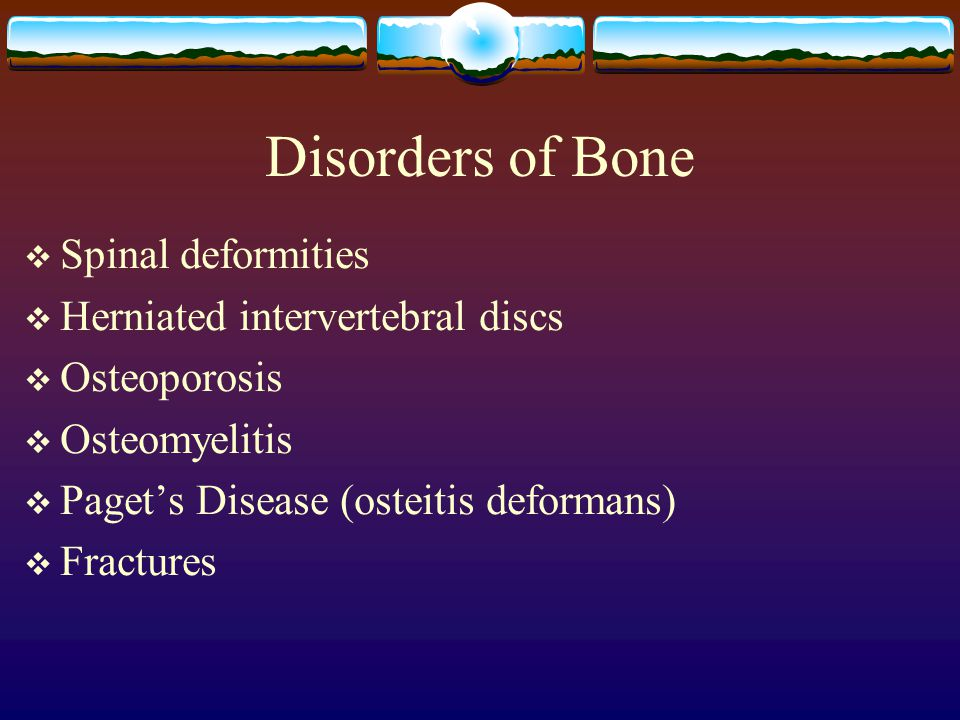 Disorders of Bone  Spinal deformities  Herniated intervertebral discs  Osteoporosis  Osteomyelitis  Paget's Disease (osteitis deformans)  Fractures