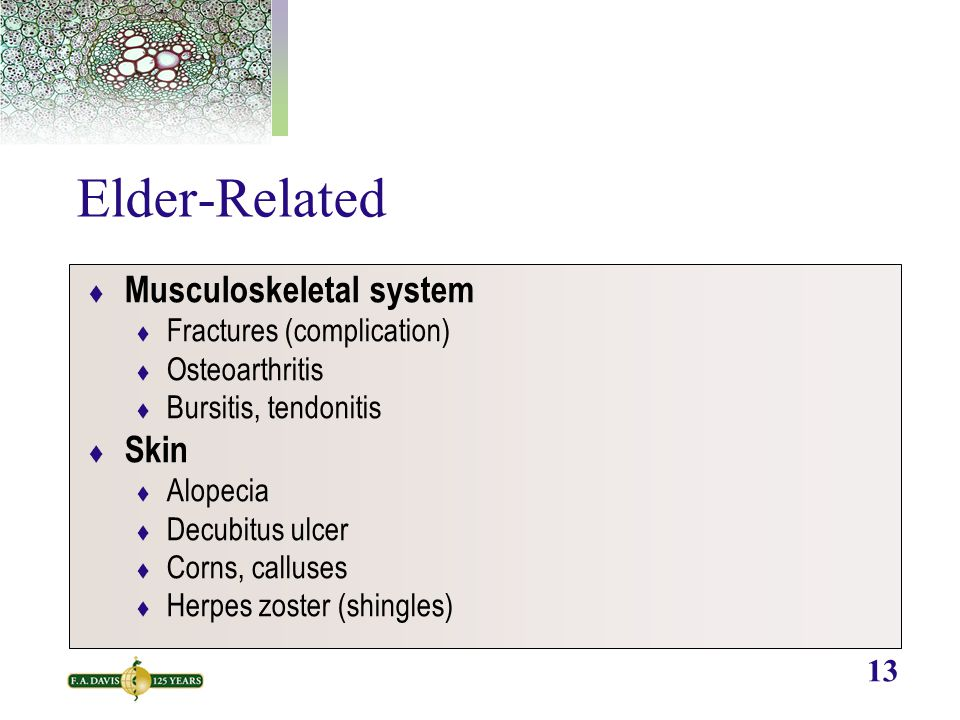 13 Elder-Related  Musculoskeletal system  Fractures (complication)  Osteoarthritis  Bursitis, tendonitis  Skin  Alopecia  Decubitus ulcer  Corns, calluses  Herpes zoster (shingles)