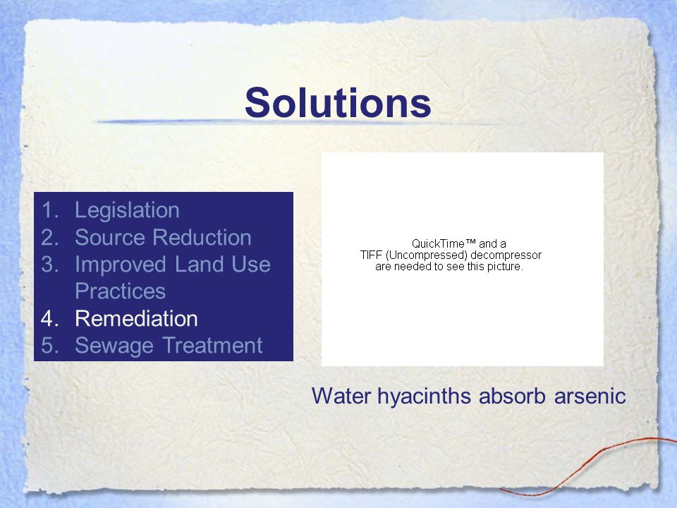 Solutions 1.Legislation 2.Source Reduction 3.Improved Land Use Practices 4.Remediation 5.Sewage Treatment Water hyacinths absorb arsenic